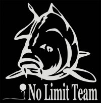 No Limit Team Avatar