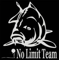 No Limit Team Avatar