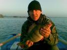 Ryba na medal