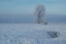 Zimowa samotność ...